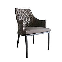 CANVAS Seabrooke Wicker Patio Dining Chair, 2-pk