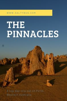 The Pinnacles are a short two hour drive from Perth, Western Australia. Pack a picnic for a great budget friendly day trip with the family. Western Australia, Day Trip, Perth, Budgeting, Picnic, Ocean, Budget Organization, Picnics, The Ocean