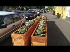 Cafe Barriers & Planter Boxes Cedar Timber - 2000mm x 360mm - 4 or 5 Boards Height, future environment Garden Builders