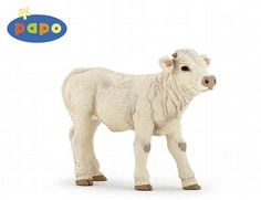 The Charolais Calf from the Papo Farm Animals collection - Discounts on all Papo Toys at Wonderland Models.    One of our favourite models in the Papo Farm range is the Papo Charolais Calf.    Papo manufacture wonderful, amazingly accurate models of all sorts of toy figures, particularly farm animals including this model of the Charolais Calf which can be complemented by any of the items in the Farm World range.