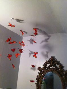 Monarch migration in attic bedroom