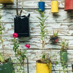 #ecosustainable, #ecosustainability, #vegan, #ecofriendly, #zero, waste, #plasticfree, #organic, #ecommerce, #naturebels Something New, Something Beautiful, Vegan Shopping, Eating Organic, Household Items, Sustainability, Eco Friendly, Planter Pots, Reduce Reuse