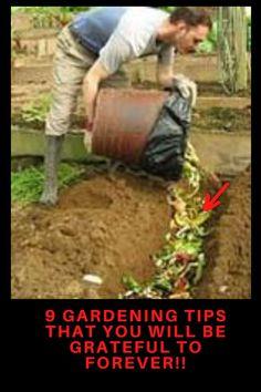 gardening ideas Vegetable Garden Tips, Starting A Vegetable Garden, Garden Tools, Garden Ideas, Gardening For Beginners, Gardening Tips, Spring Garden, Home And Garden, Vertical Garden Diy