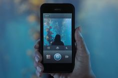 Download Instagram Videos Without Using Any Third Party Apps