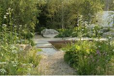 A Surprise Gold Medal at the Chelsea Flower Show - Gardenista