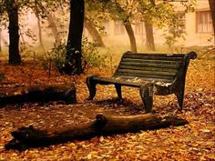 Park Bench Photo: This Photo was uploaded by surfsunskate. Find other Park Bench pictures and photos or upload your own with Photobucket free image and . Fall Desktop Backgrounds, Desktop Wallpapers, Windows Desktop, Halloween Imagem, Natur Wallpaper, Fall Wallpaper, Leaves Wallpaper, Iphone Wallpaper, Pumpkin Wallpaper