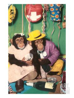 Chimpanzees in Party Mode - Art.com