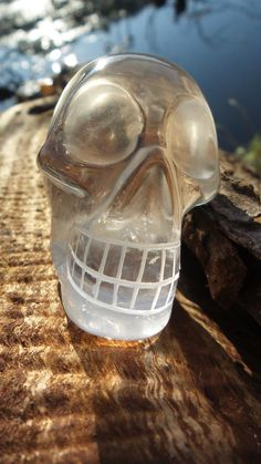 Lemurian Skull from Lemurian Seed Crystal Brazil by TheSunStore