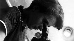Rosalind Franklin und die DNA.1962 ging der Nobelpreis für Medizin an den Amerikaner James D. Watson und die Engländer Francis Crick und Maurice Wilkins. Ihre Erforschung der Doppelhelix-Struktur der DNA galt als bedeutendste und folgenreichste genetische Entdeckung. Es ging um nicht weniger als den ersten Schritt zur Entschlüsselung des Erbgutes – und damit den Code für alle Lebewesen. Die Sache hatte nur einen Haken. Zumindest für eine Dame namens Rosalind Franklin. Dass sie nicht einmal…