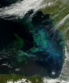 Phytoplankton bloom in the Bay of Biscay by NASA Goddard Photo and Video, via Flickr