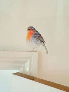 Robin wall sticker / decal, printed from original watercolour and ink painting. The robin can perch, to great effect, on a wide variety of surfaces (on light switches, on or above skirting boards, over a door frame, on a kitchen cupboard, on stair risers etc.) This robin is suitable for positioning around the home; it makes a great festive Christmas decoration, and is also suitable as a year-round house guest in hallways, kitchens, bedrooms, and playrooms. Stickers are printed on quality…