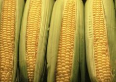 Corn on the cob may be broiled in the oven or on a grill - see website for instructions.