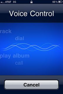 iPhone Voice Control Feature | iPhone Tips and Tricks