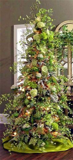 A Lovely Christmas Tree. Visit stunningpicz.blogspot.com