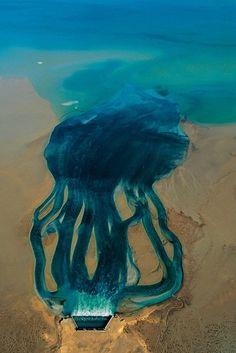 Rejets d'une usine de dessalement d'eau de mer d'Al-Doha, région de Jahra, Koweït (29°21' N – 47°49' E).
