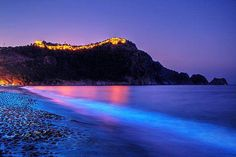Alanya - Turkey