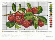 Cross Stitch Fruit, Cross Stitch Cards, Cross Stitch Flowers, Cross Stitch Embroidery, Cross Stitch Designs, Cross Stitch Patterns, Plastic Canvas Tissue Boxes, Bead Loom Patterns, Loom Beading