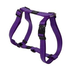 Dog Harness South Africa
