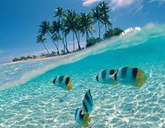 Image from http://www.nigronotaroviajes.com.ar/resources/produccion/contenidos/medium/promociones/cuba1.jpg.