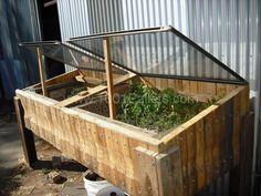 Raised hotbed for seedlings