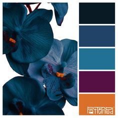 Color Palette - Indigo Petals #color #shade #palette #amazing #interior #architecture