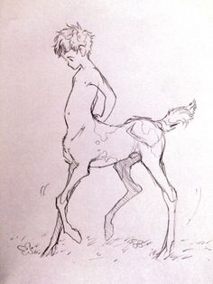 Traditional baby Aerick I sketched at work < centaur Inspiration Art, Art Inspo, Character Inspiration, Character Art, Fantasy Creatures, Mythical Creatures, Fantasy Kunst, Fantasy Art, Art Sketches