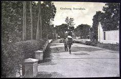 OPOI: SOERABAJA ~ GOEBENG ~ EAST JAVA ~ INDONESIA ~ 1900's