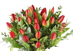 Tulips, Om, My Favorite Things, Flowers, Plants, Tulip, Flora, Royal Icing Flowers, Floral