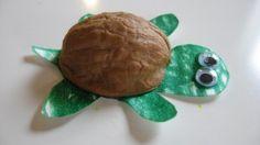 Walnut Turtle http://www.notimeforflashcards.com/2009/11/walnut-shell-turtles.html