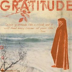 Wear gratitude like a cloak and it will feed every corner of your life. - Google Search