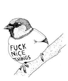 Fuck Nice Things