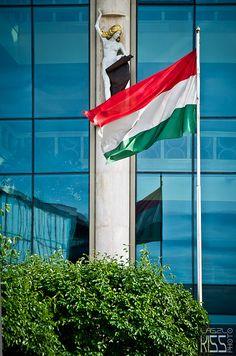 De vlag van Hongarije  foto : Laszlo Kiss  Hongarije, Boedapest