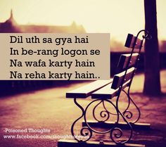 The words specially used Poetry Quotes, Hindi Quotes, Urdu Poetry, Quotations, Islamic Quotes, Urdu Thoughts, Deep Thoughts, Amazing Quotes, Love Quotes