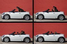 Photo John Cooper Works Roadster MINI new. Specification and photo MINI John Cooper Works Roadster. Auto models Photos, and Specs John Cooper Works, Pretty Cars, Automotive News, Automobile Industry, Mini Things, Latest Cars, Mini Me, Perfect Photo, Toys For Boys
