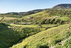 > La colline Djbel Tghat et les paysages verdoyant au nord de Fès.