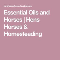 Essential Oils and Horses | Hens Horses & Homesteading