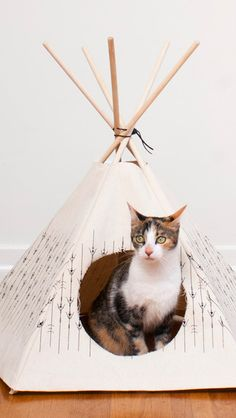 Spotty Foot Cat #Tipi // what a fun designer #teepee for the designer cat!