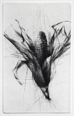 Hitesh Durgani — by Jake Muirhead Intaglio Printmaking, Collagraph, Botanical Illustration, Illustration Art, Art Illustrations, Grabar Metal, Drypoint Etching, Etching Prints, Nature Sketch