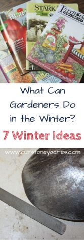 What Gardeners can do in the winter. A winter break is nice but every gardener longs for warmer weather in the winter time. Here's what gardeners can do in the winter time. for beginners utah What Gardeners can do in the winter time - Our Stoney Acres Hydroponic Gardening, Hydroponics, Organic Gardening, Container Gardening, Growing Winter Vegetables, Planting Vegetables, Veggies, Gardening For Beginners, Gardening Tips