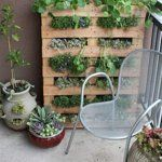 Gardening Without a Garden: 10 Ideas for Your Patio or Balcony — Renters Solutions | Apartment Therapy