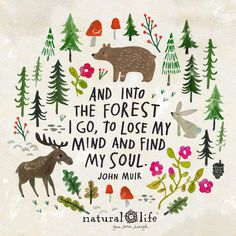 Tree Quotes Nature Life Peace Ideas For 2019 Words Quotes, Wise Words, Sayings, Wise Quotes, Natural Life Quotes, Lettering, Typography, Quotable Quotes, Beautiful Words