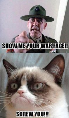 Meme Watch: Grumpy Cat Returns As A Photoshop And Fan Art Masterpiece