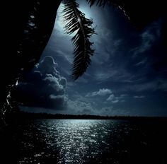 full moon in Tahiti – Moorea, French Polynesia Bora Bora, Vacation Destinations, Dream Vacations, Vacation Spots, Oh The Places You'll Go, Places To Travel, Places To Visit, French Polynesia, South Pacific
