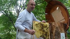 Bee business picking up in Berlin. Photo: Heinz Risse, organic beekeeper at the Prinzessinnengarten (Berlin), taken 15. Sep. 2012at the Prinzessinnengarten; Copyright: DW/C. Lomas