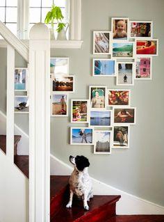 Drei VÄXBO Collage-Rahmen für 8 Fotos in Weiß in einem Treppenaufgang platziert. Auf dem Treppenabsatz sitzt ein Hund.