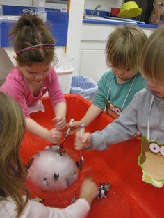 Ice Picking, good for sensory table -- using metal spoons Sensory Tubs, Sensory Activities, Winter Activities, Indoor Activities, Family Activities, Preschool Lessons, Preschool Classroom, Classroom Activities, Winter Fun