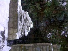 Shimla in Waknaghat, Himāchal Pradesh