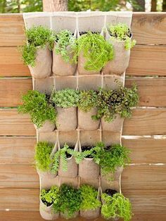 Garden And Lawn , Great Vertical Vegetable Garden, Hanging Pocket Vertical Vegetable Garden