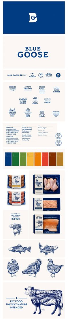 Here you go @PROCESSEXPO @Andrea Giordano expanded pin for Blue Goose #identity #packaging PD