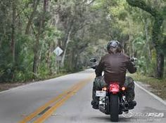 Image result for guy riding harley rear view